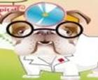 Dr.Bulldog's Pets Hospital