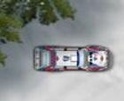 Drift Rally Snow