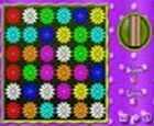Puzzle de acción de flores