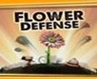 Kiz - Defensa de las flores