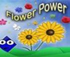 Poder de la flor