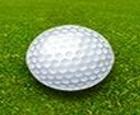 Campeón de Golf Putt