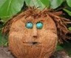 Jigsaw: Coconut Man