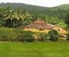 Rompecabezas: granja de la selva