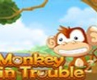 Mono en problemas
