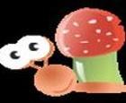 Fiesta de hongos