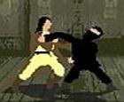 Asalto ninja