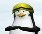 Castillo de los pinguinos