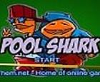 Piscina de tiburones
