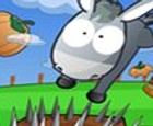 Salvar el burro
