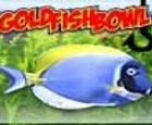 Cuenco de peces de colores