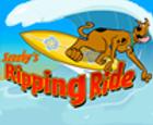 Scooby Doo Surfear