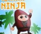 Ninja sin espada