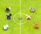 Fútbol de Mascotas