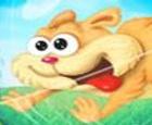 Run Hamster Run