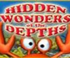 Maravillas ocultas en las profundidades