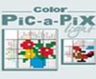 Pic a Pix Color