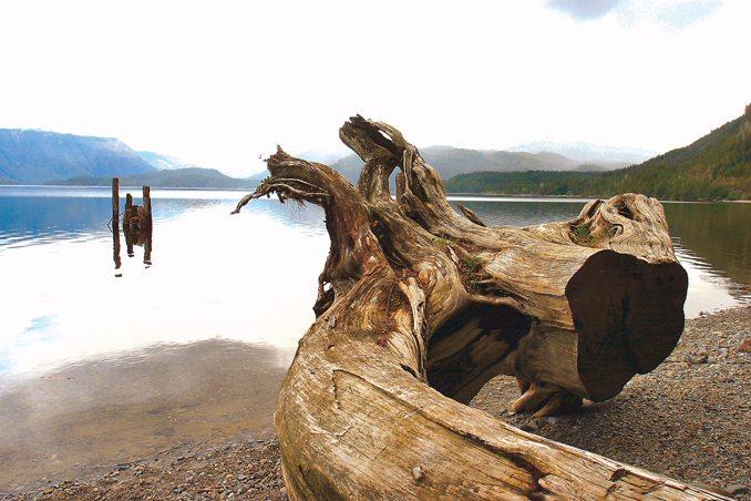 Kennedy Lake, Tofino