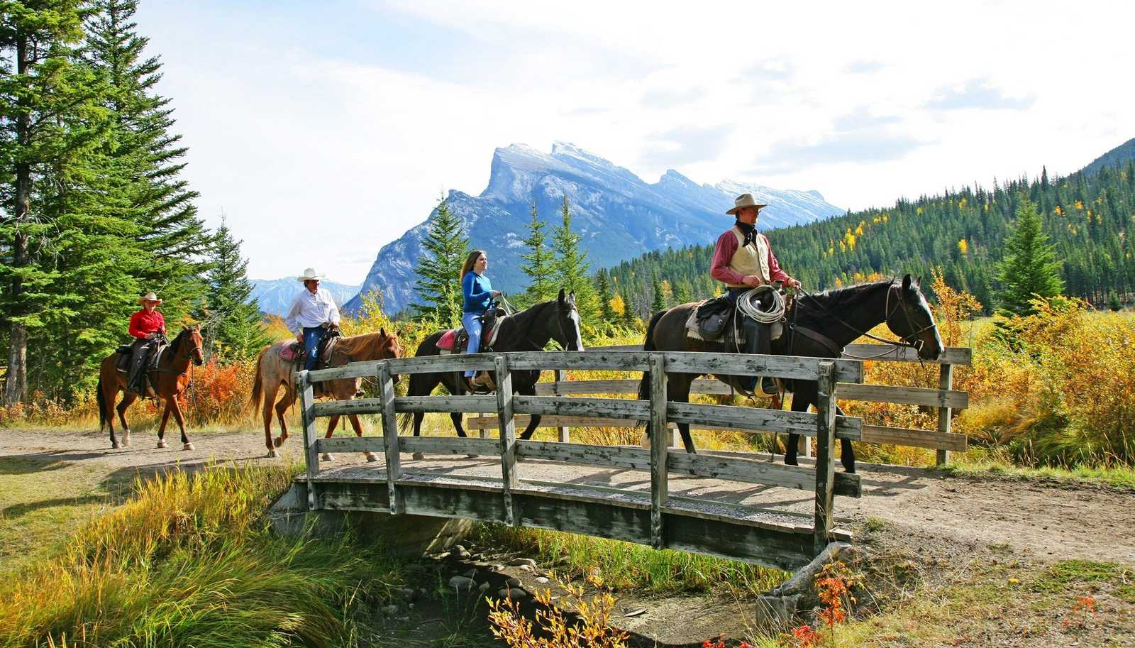 Activities Banff Horseback Riding