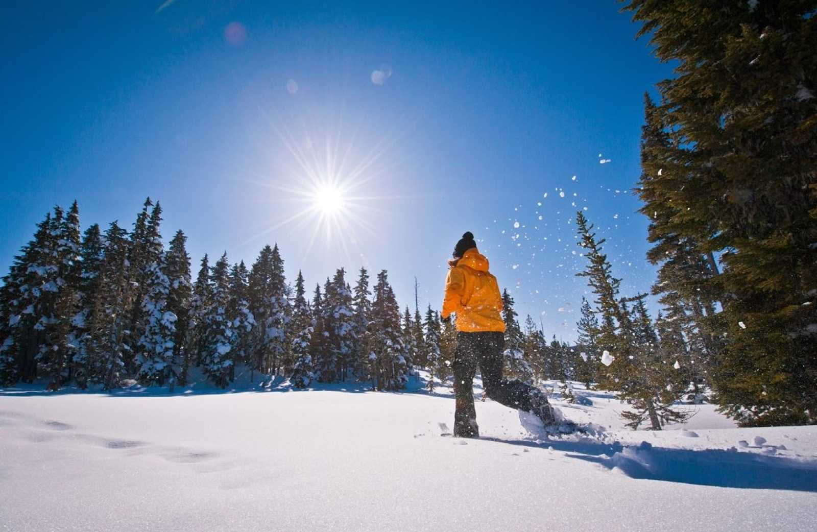 Snowshoe hike in winter BC