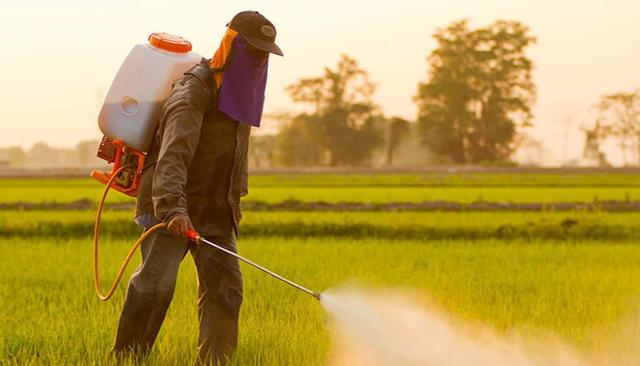 Time to reclaim the right to safe food