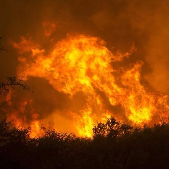 California wildfire claims 31 lives