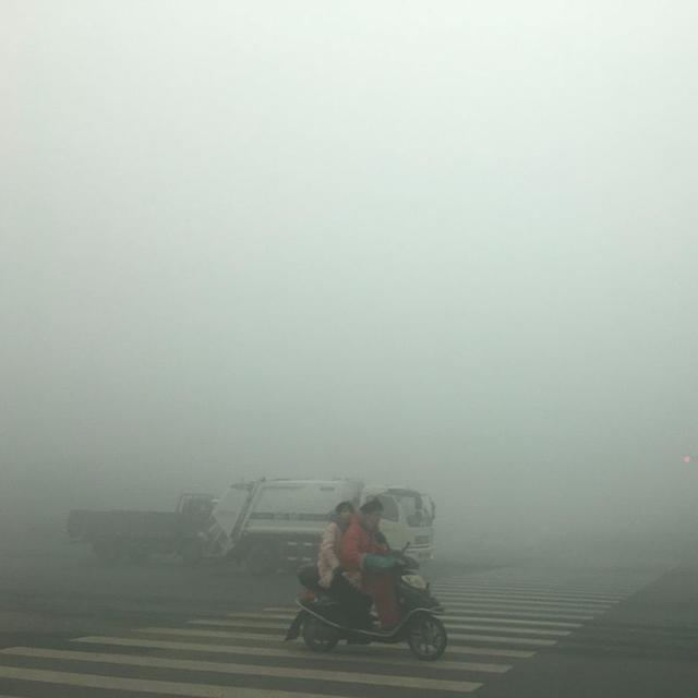 Pollution killed 2.5 million people in India: Study