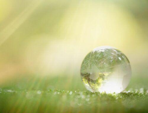 Trajnostni razvoj