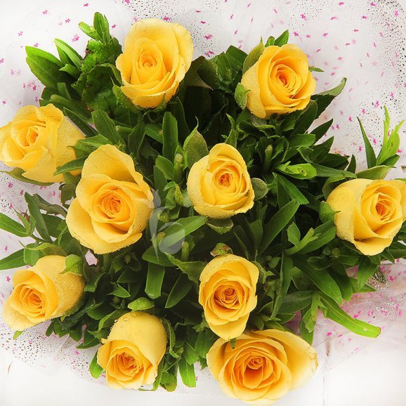 Zoomed view of 10 yellow roses - First gift of Warm Wishes