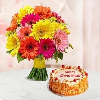 A 1/2 kg delightful butterscotch cake and 10 gerberas bunch for Christmas