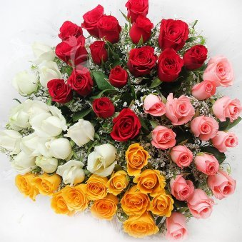 50 Multicolor Roses Bouquet with Top View
