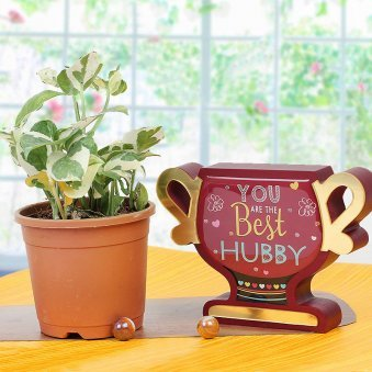Combo of White Pothos and You Are The Best Hubby Trophy