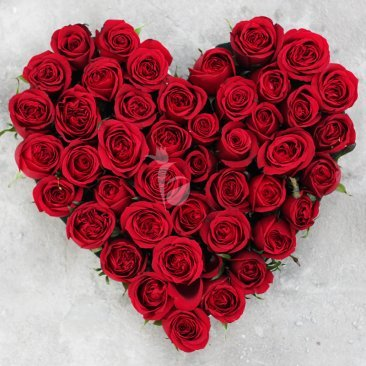 All My Heart- 50 roses heart shaped bouquet for your love