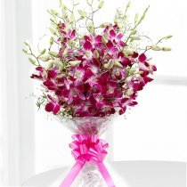 6 Orchids Bunch