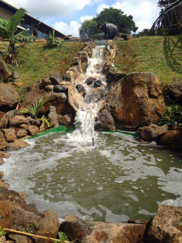 Dora Farmhouse Wedding Venue Mauritius Waterfall
