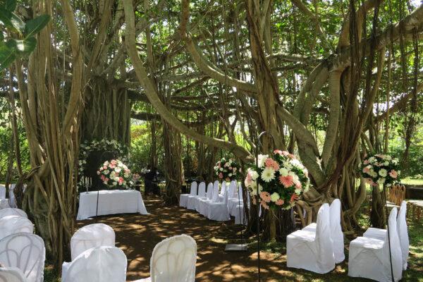La Demeure De Saint Antoine Wedding Venue