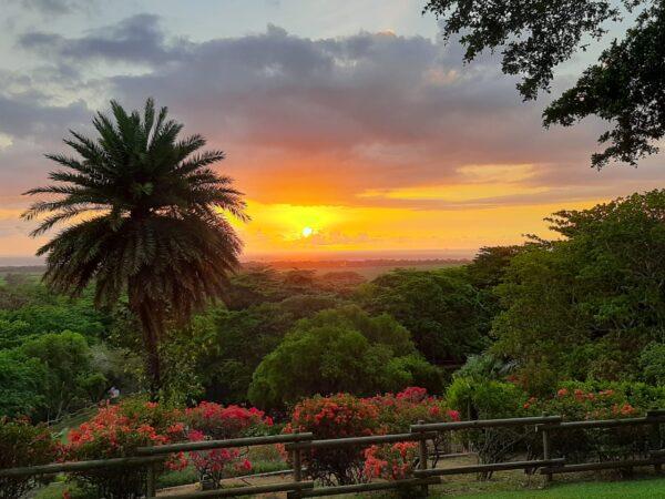 Casela Nature Park Wedding Venue Mauritius View
