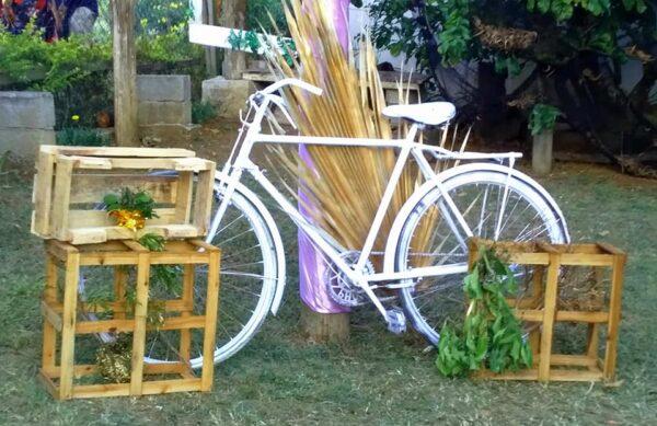 Le Paradise Wedding Hall Garden