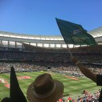 rugby-travel-ireland-cape-town-south-africa-match