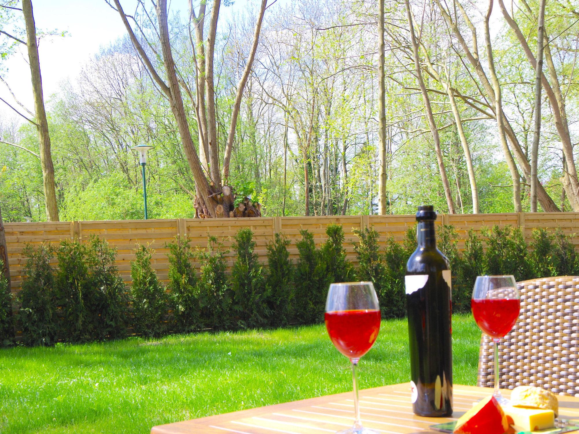 Blick in den Garten mit Rasen, Bäumen im Hintergrund und Terrassenmöbel, bestehend aus einem Tisch und Stühlen