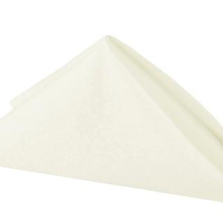 20x20 Ivory polyester napkins
