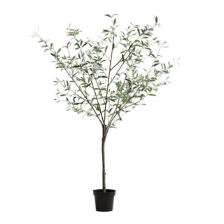 Faux Olive Tree, Black Pot, 8.5 ft tall.