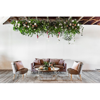 Purple sofa with two gray chairs with greenery above