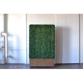 oversized greenery wall backdrop