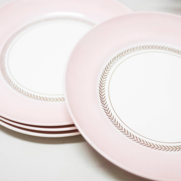 American Limoges Dinner Plates