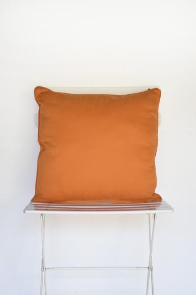 Orange Canvas Pillow