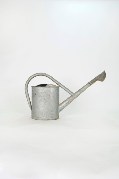 Shower Spout Watering Can