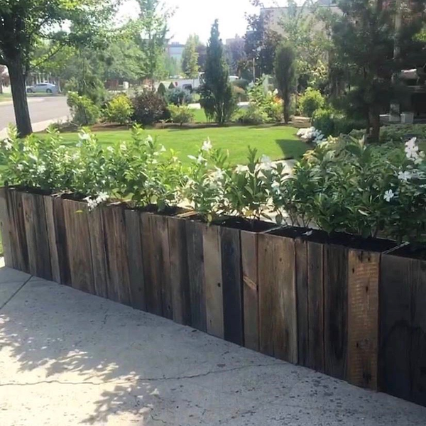 Efflorescence Planter Box