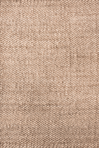 Jute Rug without Fringe // 9'x12'