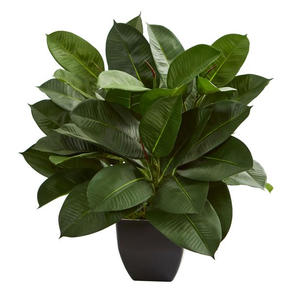 faux oak ficus plant